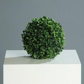 Buchskugel grün