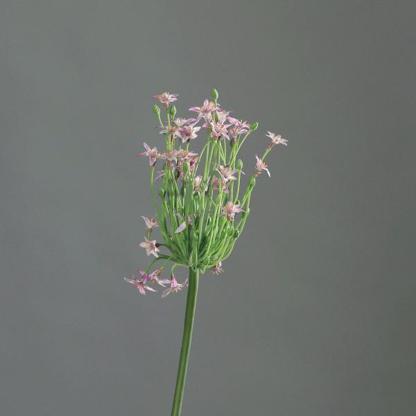 Kunstblume Allium Lavendel