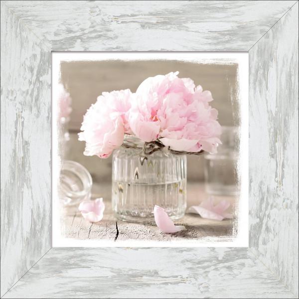 Gerahmtes-Bild ROSE FLOWERS