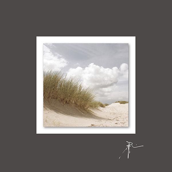 Acrylglasbilder auf Aludibond (LB 50x50 cm)