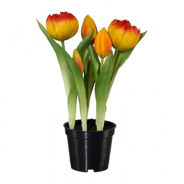Kunstblume Tulpe
