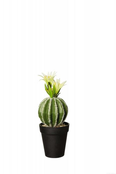 Kunstpflanze Kaktus mit Blüte