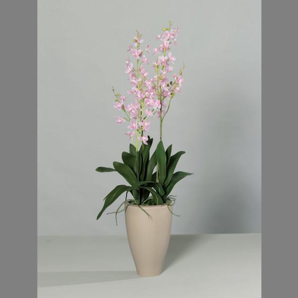 Kunstblume Oncydie pink/weiß