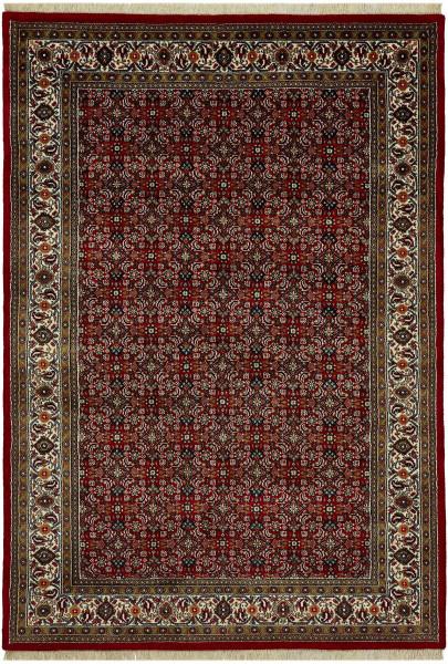 Classic Herati rot