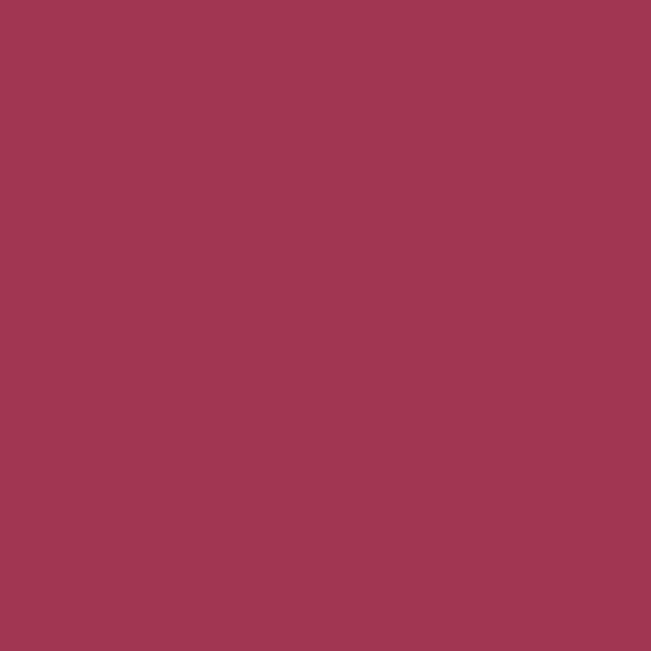 Serviette SOFT TOUCH burgundy