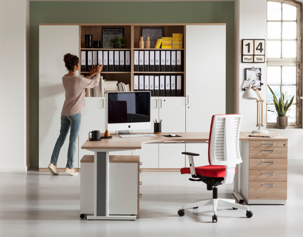 Büroschrankkombination E10