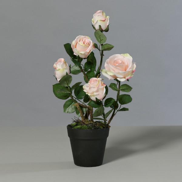 Kunstpflanze Rose 5 Blüten sal