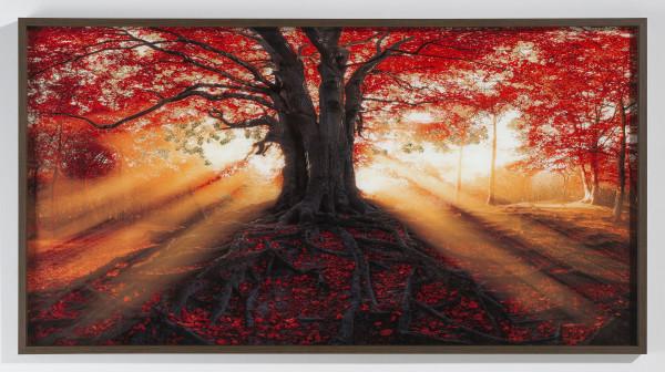 Glas Bild Baum (BHT 150x80x3,7 cm)
