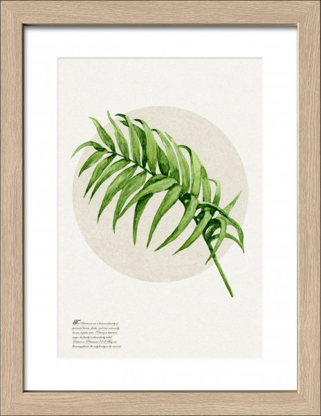 Gerahmtes-Bild GREEN PLANT I