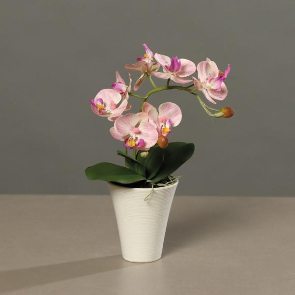 Kunstblume Orchidee
