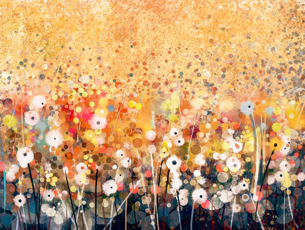 Bild Flowers Abstract meadow
